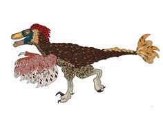 Amphibians, Mammals, The Other Guys, Prehistoric Creatures, Tyrannosaurus, History Books, Natural History, Dinosaurs, Swift