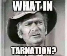 This is funny to me because we don't even know what the word means cuz its not one..lol So therefore that's what he is sayin; he doesn't know what he is seeing..so its a tarnation thing that has him puzzled. lol