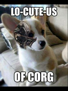 Hahahaha!  awesome!
