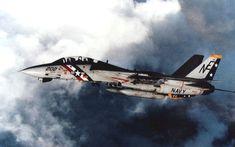 F-14A Tomcat - VF-2 Bounty Hunters #aviationhumorpeople
