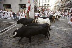 Un toro 'esprinter' lidera un limpio encierro de Valdefresno | Los toros, en el tramo de Mercaderes. / Jesús Diges (EFE) EL País