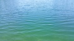 The water of Lake Ida. Park Rapids, Captiva Island, Beach, Outdoor, Water, Outdoors, The Beach, Beaches, Outdoor Games