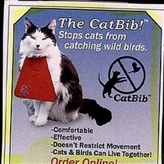 Trouble with your cat attacking birds? (ok, i'm not sure what this bib would do, but it's funny)