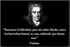 Voltaire - En busca de la felicidad