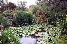 5. Los Angeles Arboretum
