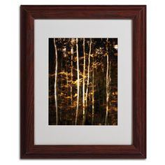 'Meli Melo' by Philippe Sainte-Laudy Matted Framed Photographic Print
