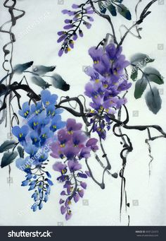 Tender flowering wisteria painted in Chinese style
