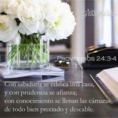 Proverbios 24:3-4 Con sabiduría se edificará la casa, y con prudencia se afirmará; y con ciencia se llenarán las cámaras de todo bien preciado y agradable. ♔