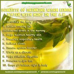 Warm lemon and mint water