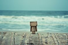 Danbo at the beach