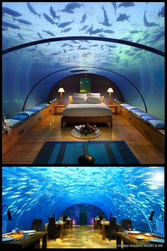 Ithaa: The Underwater Restaurant in the Maldives. Located 16 feet (4.87 m) below sea level