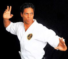 Taimak Guarriello studied Chinese Goju, Goju-ryu, Taekwondo and Jujitsu. He studied Chinese Goju under martial arts legend and fight choreographer Ron Van Clief. He works as a martial arts trainer to the stars, but is known world wide for playing Leroy Green. Finest hour: The Last Dragon
