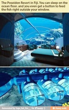 Must do! Underwater hotel...windows to underwater paradise.