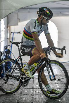 Grand Prix Cycliste de Quebec 2016 Training Peter SAGAN Grand Prix Quebec / Tim De Waele /Corbis via Getty Images Cycling Art, Cycling Bikes, Grand Prix, Cycling Motivation, Bicycle Race, Cycling Workout, Road Bikes, Road Racing, Cycling Outfit