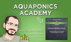 Aquaponics Academy episode #14