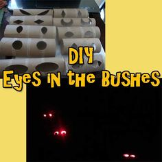 DIY Eyes In The Bushes- Great For Halloween!