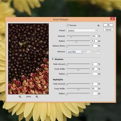 How to Sharpen Your Photos in Photoshop