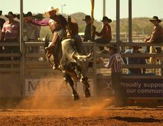 Take a look at Mount Isa and other sites in the Australian Outback Professional Bull Riders, Bucking Bulls, Real Cowboys, Riding Lessons, Bull Riding, Country Life, Country Boys, Cowboy And Cowgirl, My Ride