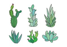 Cactus and succulents outlined drawings.