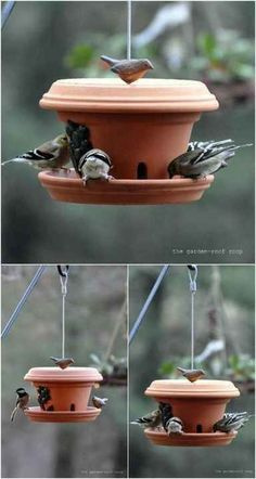Bird feeder garden bird feederBird feeder garden bird feederThese terra cotta flower pots turned bird feeders are beautiful additions to you .These terra cotta flower pots turned bird feeders are beautiful additions to your Clay Pot Projects, Clay Pot Crafts, Diy Crafts, Craft Projects, Decor Crafts, Shell Crafts, Bird House Feeder, Diy Bird Feeder, Wooden Bird Feeders