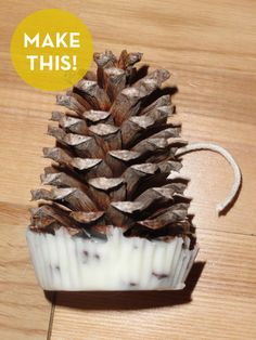 Craftaholics Anonymous® | 25 Pine Cone Crafts; pinecibe fire starter.