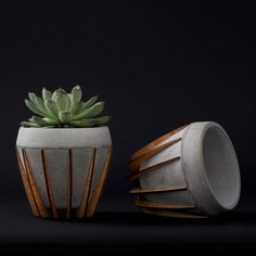 La Morena Plant Pot by Shift - Cast Concrete in a Laser-Cut Wood Cradle - Homeli Beton Design, Concrete Design, Wood Design, Concrete Plant Pots, Concrete Planters, Planter Pots, Concrete Crafts, Concrete Projects, Wood Cradle