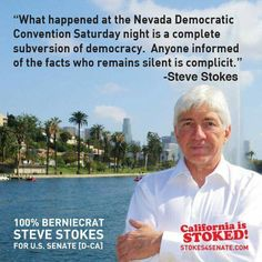Steve Stokes for US Senate. #StillSanders #BernieOrBust #OverturnCitizensUnited #REVOLUTION #NOTMEUS #VoterSuppression #neverhillary