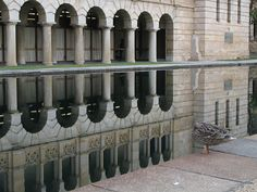 Reflecting Pool at the University of Western Australia, Crawley, Western Australia #reflections