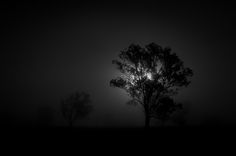 Dark and foggy night | Dean Browne
