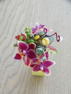Polscorsage met mini Phalaenopsis, Chasmanthium latifolium, Ceropegia woodii, Senecio rowleyunus en succulent
