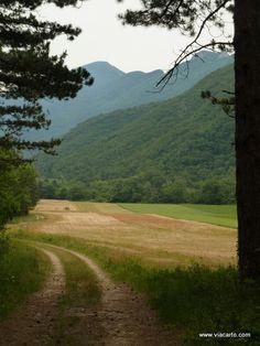 Entre forêt et champs - Massif de Saoû Randonnées sur www.viacarto.com