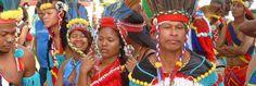 Suriname Dschungeltours - Reisen, Natur und Abenteuer im Amazonas Regenwald