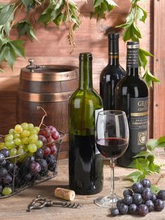 Wine Bottle Art, Wine Art, Wine Photography, Still Life Photography, Wine Vineyards, Wine Decor, Italian Wine, Still Life Art, Wine Time
