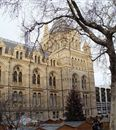 Natural History Museum. Time to Spend: 2 hrs - Half Day. Cost: $0.  Best things to Do in London.
