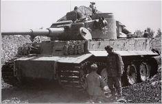 Tiger Nr. 333 - sPzAbt. 503   by Panzertruppen