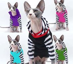 Sphynx Clothes Cat HOODIE Long Sleeve Strange Stripes Multi Colors available Cat Sweater Goth pet Shirt striped lined hood dog clothes  The GOTHIC