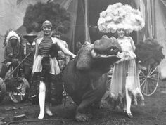 In the early years of the Sells-Floto Circus, the animals were extraordinary. Here, a hippopotamus named 'Bonfils' is escorted by two circus beauties. Vintage Photographs, Vintage Photos, Circo Vintage, Cute Hippo, Im Fabulous, Big Top, Vintage Circus, Hippopotamus, Sideshow