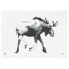 Teemu Järvi's Elk poster, 70 x 50 cm