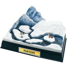 Arctic penguin diorama for happy feet Ecosystems Projects, Science Projects, School Projects, Projects For Kids, Project Ideas, Shoe Box Diorama, Diorama Kids, Magazine Crafts, School Displays