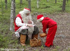 Santa Claus picking superlichens with an elf in Lapland