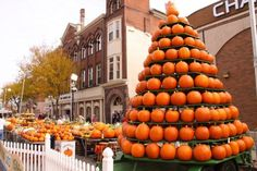 Where: Circleville, Ohio  When: October 21-24, 2015 What to expect: Parades and delicious fall treats. Plus, more than 10,000 pounds of pumpkins, squash, and guards beautifying the streets! For more information, visit pumpkinshow.com.   - CountryLiving.com