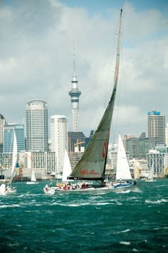 Travel Inspiration for New Zealand - Every October, Auckland hosts the largest coastal yacht race in the Southern Hemisphere New Zealand North, Auckland New Zealand, New Zealand Travel, Beautiful Sites, The Beautiful Country, Hong Kong, New Zealand Houses, South Island, Places To See