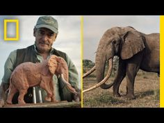 Join This Man On A Safari To Sculpt Animals In The Wild | Short Film Showcase : Video Clips From The Coolest One