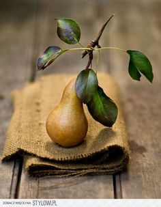 still life ...one perfect pear ...