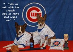 Chicago Cubs dogs (spawties)