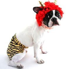 「僕に豆をあてないでね。」 アフロと腰巻きがセットの鬼コスプレセット。今年の節分は愛犬と一緒に楽しめそう♪ https://room.rakuten.co.jp/room_jp/1700003320758222?scid=we_rom_pinterest_official_20150128_r1