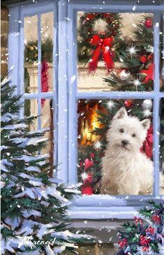 Dog At Window 1