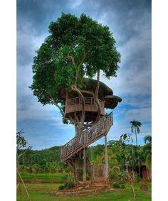 tree house design - Home and Garden Design Ideas
