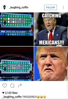 Catching Mexicans funny lol humor funny pictures funny memes funny pics funny images really funny pictures funny pictures and images trump Funny Shit, Funny Posts, Hilarious, Funny Stuff, Super Funny, Really Funny, The Funny, Memes Humor, Jokes