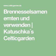Brennesselsamen ernten und verwenden   Katuschka´s Celticgarden